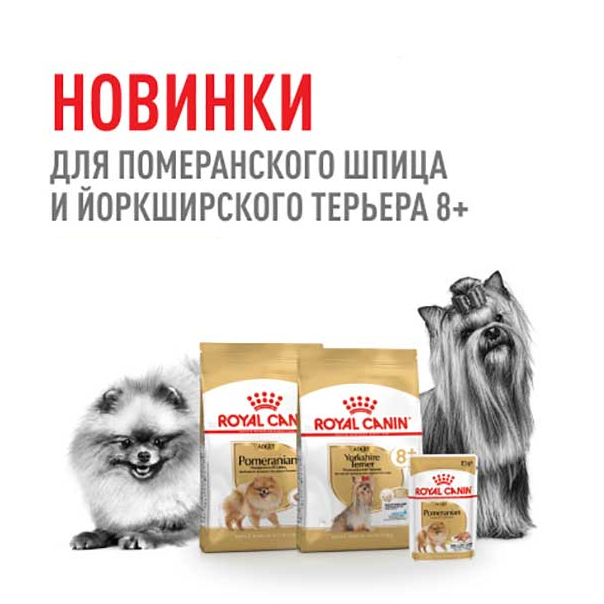 Новинка от Royal Canin!